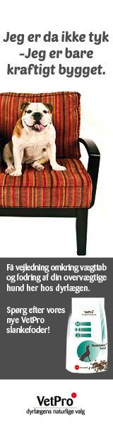 VetPro slankefoder til hund