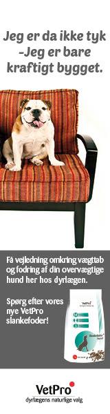 VetPro slankefoder til overvægtige hunde