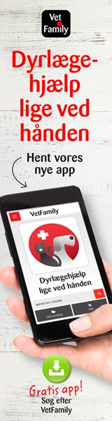 VetFamily_app