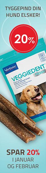 Tilbud Veggiedent Fresh